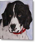 Pippy The Springer Spaniel Metal Print