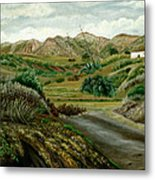 Pitas' Path Metal Print