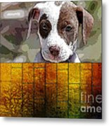 Pitbull Puppy Metal Print