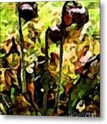 Pitcher Plant Abstraction Metal Print