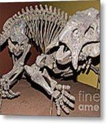 Placerias Fossil Metal Print
