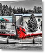 Flying To Lunch In Pacific Northwest Washington  Metal Print