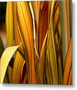 Plant In Yellow And Green Metal Print