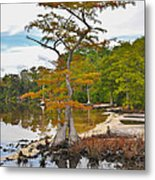 Planted By The Water Metal Print