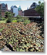 Plants And Flowers On The High Line Metal Print