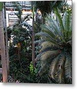 Plants - Us Botanic Garden - 011311 Metal Print