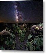 Plants Vs Milky Way Metal Print