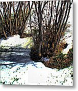 Plantsnowscape 2009 Metal Print