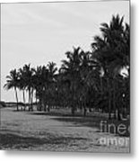 Playa Del Sur Metal Print