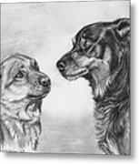 Playing Dog's Emotions Metal Print