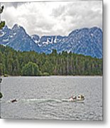 Playing In Colter Bay In Grand Teton National Park-wyoming Metal Print