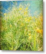 Playing In The Breeze Metal Print