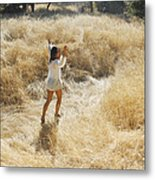 Playing In The Grass Metal Print