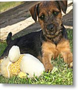 Playmates - Puppy With Toy Metal Print