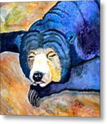 Pleasant Dreams Metal Print by Debi Starr