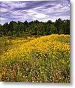 Pleasant Meadow Foreboding Sky Metal Print