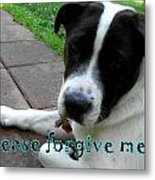 Please Forgive Me  Metal Print