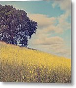 Please Send Some Hope Metal Print by Laurie Search