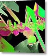 Plm Of Crystals Of Saccharin Metal Print