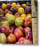 Plum Gorgeous Metal Print by Caitlyn  Grasso
