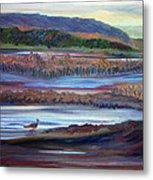 Plum Island Salt Marsh Sunset Metal Print