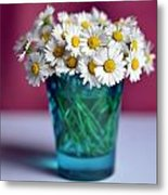 Pocket Garden Metal Print
