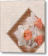 Poem Of Peach Daffodils Metal Print