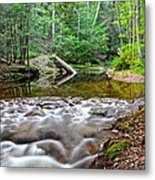 Poetic Side Of Nature Metal Print