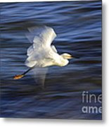 Poetry In Motion, Malibu California Metal Print
