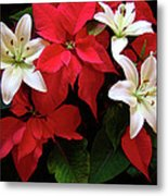 Poinsettia And Lilies Metal Print