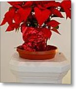 Poinsettia On A Pedestal No 1 Metal Print