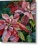 Poinsettia Pair Metal Print