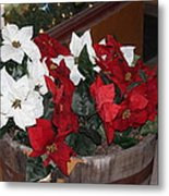 Poinsettias Metal Print