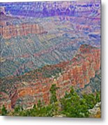 Point Imperial On North Rim Of Grand Canyon National Park-arizona   Metal Print