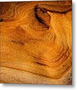 Point Lobos Abstract 10 Metal Print