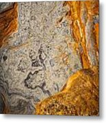 Point Lobos Abstract 12 Metal Print