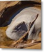 Point Lobos Abstract 3 Metal Print