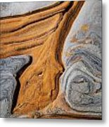 Point Lobos Abstract 5 Metal Print