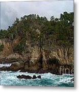Point Lobos Coastal View Metal Print