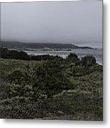 Point Lobos National Park Metal Print