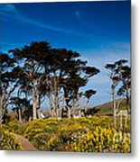 Point Loma Metal Print