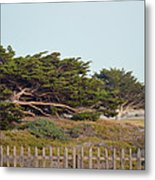 Point Pinos Lighthouse Pacific Grove California Metal Print