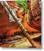 Pointing The Way Metal Print