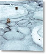 Points Of Winter Freeze Metal Print