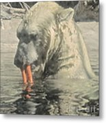 Polar Bear Snacking Metal Print