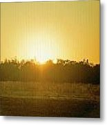 Polk City Sunrise Metal Print