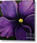 Polka Dot Purple African Violet Metal Print