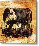 Polled Herford Bull 22 Metal Print