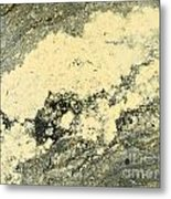 Pollen Of Black Spruce Trees On Water Surface Metal Print
