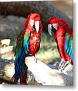 Polly And Pauly Metal Print